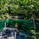 Alt- Cenote Tortuga
